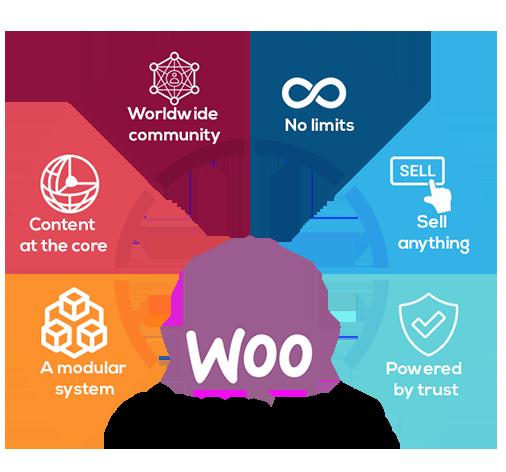 Wocoomerce Wide web